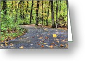 Jogging Photo Greeting Cards - The Mount Vernon Trail. Greeting Card by JC Findley