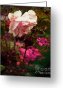 Fineartprint Greeting Cards - The Mystical Rose Greeting Card by Rayofra Ra
