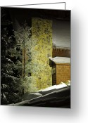 Winter Trees Greeting Cards - The Night Light Greeting Card by Lois Bryan