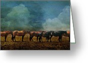 Quarter Horses Greeting Cards - The Non-Conformist Greeting Card by Karen Slagle