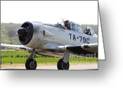 Texan Greeting Cards - The North American T6 Texan Military Aircraft . 7d15779 Greeting Card by Wingsdomain Art and Photography