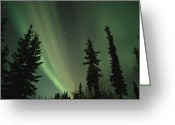 Evening Scenes Photo Greeting Cards - The northern lights Greeting Card by Maria Stenzel