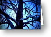 Braches Greeting Cards - The Obfuscating Tree Greeting Card by Xn Tyler