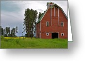 Yellow Trees Greeting Cards - The Old Red Barn Greeting Card by Karon Melillo DeVega