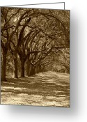 Live Art Greeting Cards - The Old South Series in sepia Greeting Card by Suzanne Gaff