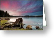 Twilight Greeting Cards - The Old trunk Greeting Card by Evgeni Dinev