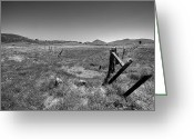 Barbed Wire Fences Photo Greeting Cards - The Open Pasture - Black and White Greeting Card by Peter Tellone