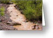 River Flooding Greeting Cards - The Ourika River In Spate Greeting Card by Bob Gibbons
