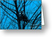 Silhouettes Greeting Cards - The Owl . Blue Greeting Card by Wingsdomain Art and Photography