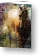 Contemporary Horse Digital Art Greeting Cards - The Palomino Greeting Card by Sue Fulton