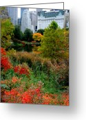 The New York New York Greeting Cards - The Park and The Plaza Greeting Card by Christopher Kirby