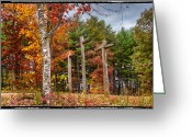 Fall Cards Greeting Cards - The Peace that passes all understanding Greeting Card by Debra and Dave Vanderlaan