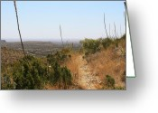 "\""guadalupe National Park\\\"" Greeting Cards - The Permian Reef Trail Greeting Card by Brian M Lumley"