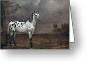 Wild Horse Painting Greeting Cards - The Piebald Horse Greeting Card by Paulus Potter