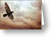 Beautiful Clouds Greeting Cards - The Pigeon Greeting Card by Bob Orsillo