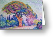 Colours Greeting Cards - The Pine Tree at Saint Tropez Greeting Card by Paul Signac
