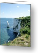 Seaside Greeting Cards - THE PINNACLE stack of white chalk from the cliffs of the Isle of Purbeck Dorset England UK Greeting Card by Andy Smy