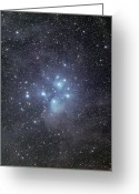 Star Clusters Greeting Cards - The Pleiades Surrounded By Dust Greeting Card by Phillip Jones