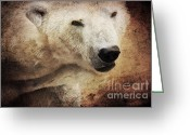 Polar Bear Greeting Cards - The polar bear Greeting Card by Angela Doelling AD DESIGN Photo and PhotoArt