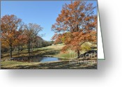 Cheekwood Gardens Greeting Cards - The Pond Greeting Card by Denise Ellis