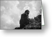 The Lightning Man Greeting Cards - The Praying Monk with Halo - Camelback Mountain BW Greeting Card by James Bo Insogna