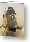 Sailing Ships Greeting Cards - The Pride Of Baltimore Clipper Ship Greeting Card by George Grall