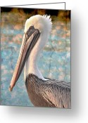 Pelicans Greeting Cards - The Prince Greeting Card by Debra and Dave Vanderlaan