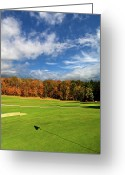 Golf Green Greeting Cards - The Putting Green Greeting Card by Phil Koch