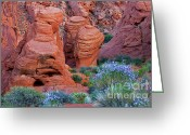 Desert Southwest Greeting Cards - The Red and the Blue Greeting Card by Christine Till