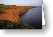 Shorelines Greeting Cards - The Red Cliffs Of Prince Edward Island Greeting Card by Taylor S. Kennedy