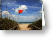 Beach Greeting Cards - The Red Flag Greeting Card by Susanne Van Hulst