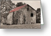 Selective Color Greeting Cards - The Red Roof Greeting Card by JC Findley