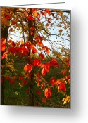 Red Leavies Greeting Cards - The Reds of Autumn Greeting Card by Julie Dant