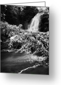 River Flooding Greeting Cards - the river at the Gleno or Glenoe Waterfall beauty spot county antrim Greeting Card by Joe Fox