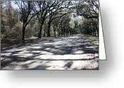 Country Lanes Photo Greeting Cards - The Road Home Greeting Card by Carol Groenen