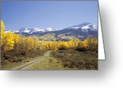 Dusty Road Greeting Cards - The Road Less Traveled Greeting Card by Dusty Demerson