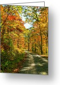 Wv Greeting Cards - The Road Less Traveled Greeting Card by Steve Harrington