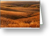 Midwestern States Greeting Cards - The Rolling Hills Of Konza Prairie Greeting Card by Jim Richardson