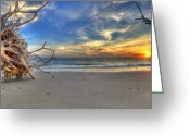 Setting Pastels Greeting Cards - The Root of Sunshine Greeting Card by Sean Allen