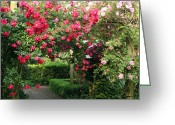 Chevalier Greeting Cards - The Rose Arbor Greeting Card by Elizabeth Chevalier