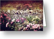 Fushia Photo Greeting Cards - The Rose Garden Greeting Card by Stephanie Frey