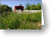 Clint Greeting Cards - The Roseman Bridge in Madison County Iowa Greeting Card by Susanne Van Hulst