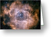 H Ii Regions Greeting Cards - The Rosette Nebula Greeting Card by Charles Shahar