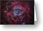 Molecular Clouds Greeting Cards - The Rosette Nebula Greeting Card by Robert Gendler