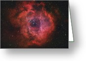 H Ii Regions Greeting Cards - The Rosette Nebula Greeting Card by Rolf Geissinger