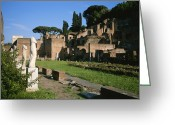 Latium Region Greeting Cards - The Ruins Of The Garden Of The Vestal Greeting Card by Taylor S. Kennedy