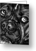 Oil Painting Greeting Cards - The Sad Boxer Greeting Card by Enzie Shahmiri