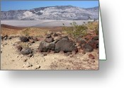Barren Land Greeting Cards - The Salt Flats of Death Valley Greeting Card by Christine Till
