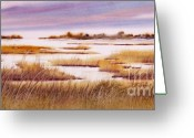 Bayview Greeting Cards - The Salt Marsh Greeting Card by Dorothy Harrison Braun