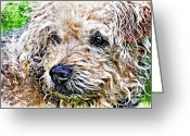 Trouble Greeting Cards - The Scruffiest Dog In The World Greeting Card by Meirion Matthias